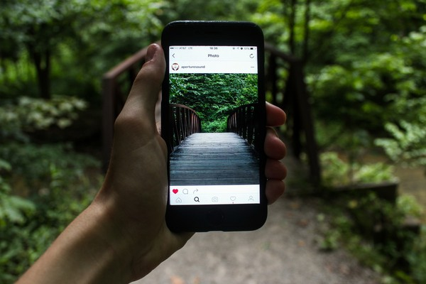 Can Your Social Media Activity Prevent You From Getting The Job?